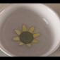 Embedded thumbnail for Ako si vyrobiť papierový rozkvitajúci kvietok